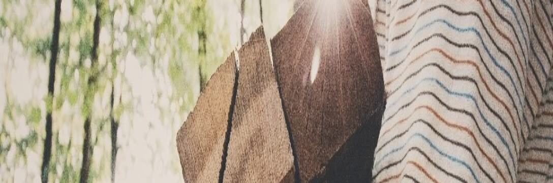 Is Timber Sustainable?